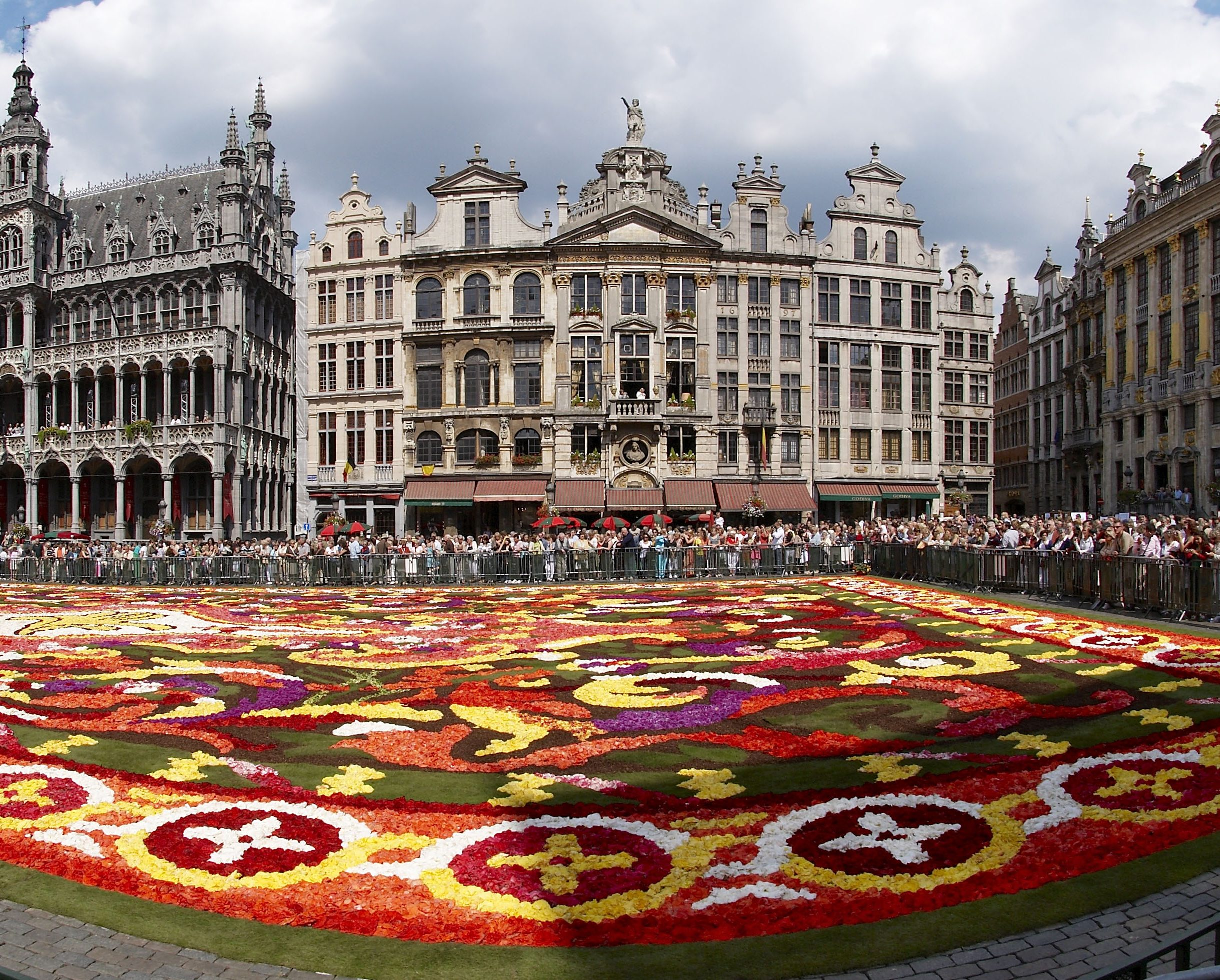Brussels_floral_carpet_C